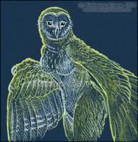 Anthro Barn Owl Woman - Sketch by Dreamspirit