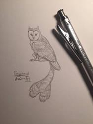 30 Day Story-Sketch Challenge: Day 14: Gryphowl by Dreamspirit