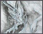 Oriental Kudu Dragon Sketch CU
