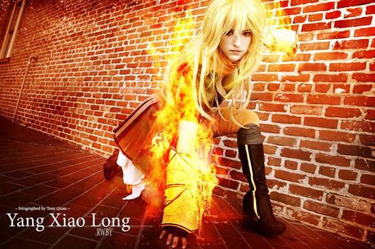Yang Xiao Long - RWBY - I REALLY Burn