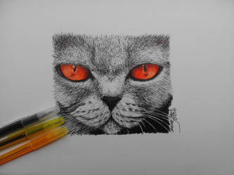 Cat from hell by naiangloria