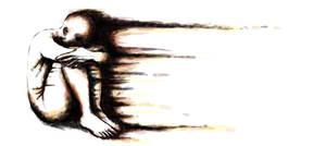 fiery soul by vanamonster