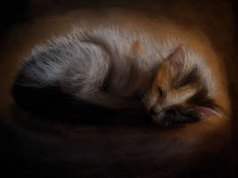 little kitty by Blacleria