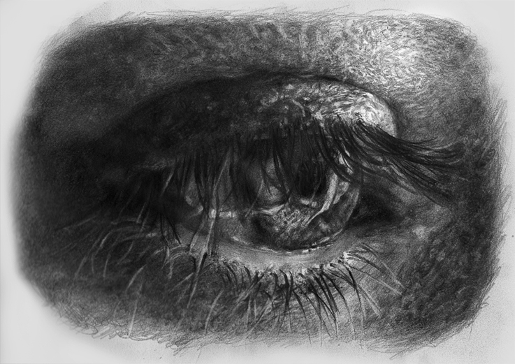 eye study by Blacleria