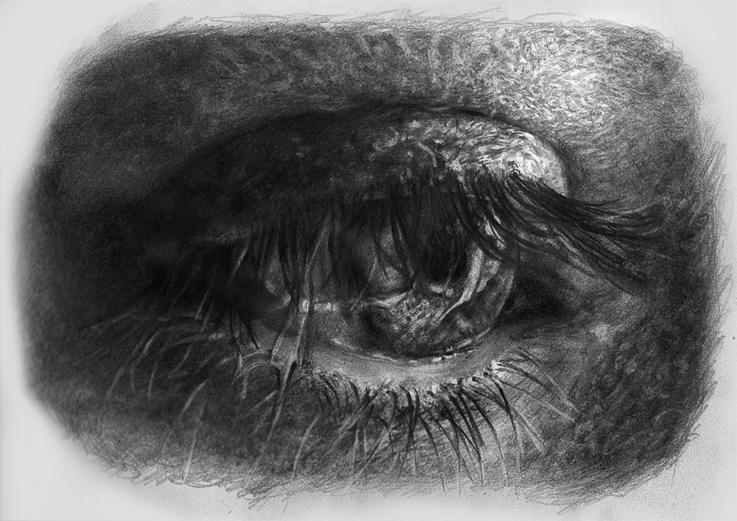 eye study by Blacleria