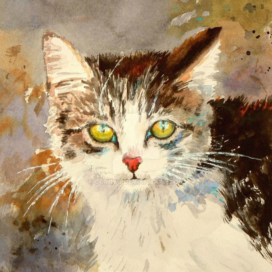 Water color Cat , 3 hours  work by curryQ