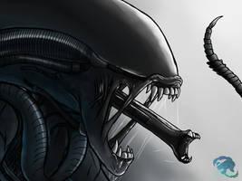 THE XENOMORPH by kittygirlxjanax