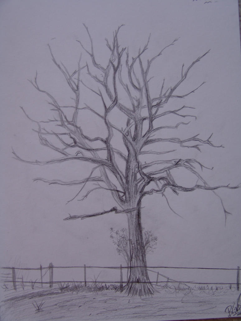 how to draw a dead tree easy
