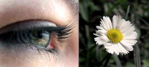 world in my eyes 3.