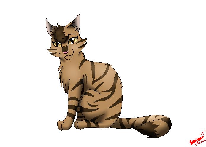 Warrior Cat Background  X