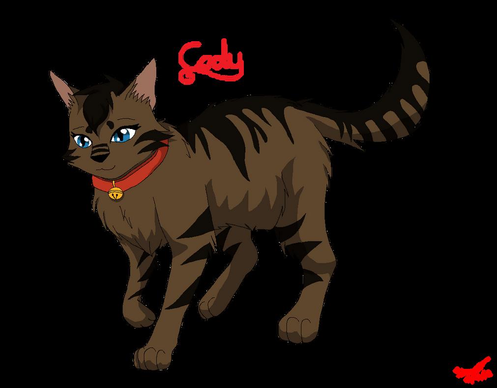 Cody Warrior Cats