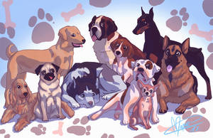 Breeds by Mapvee