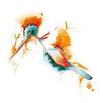 Bird of Summer