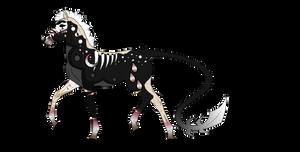 N4292 Padro Foal Design