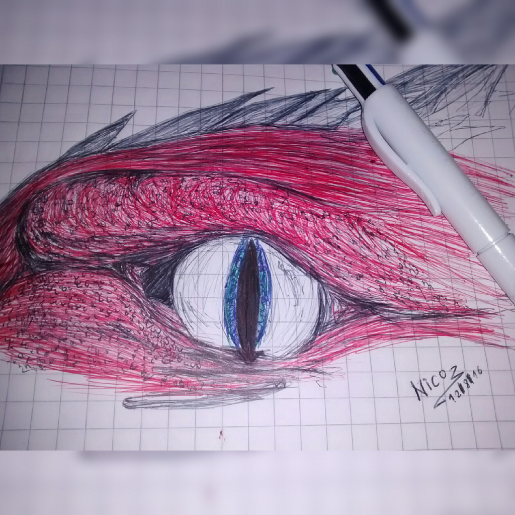 Dragon eye by nicowtc