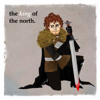 Robb Stark by michA-sAmA