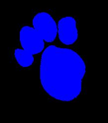 Play Blues Clues Pawprint