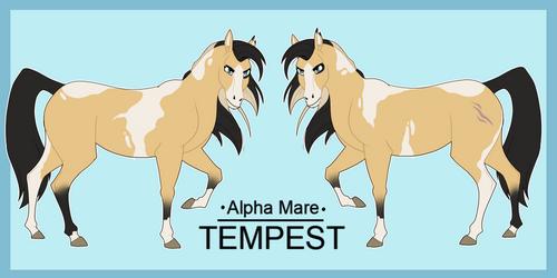 Tempest ref sheet