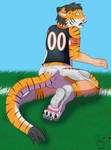 NFL TF #3: Who Dey the Bengal Tiger