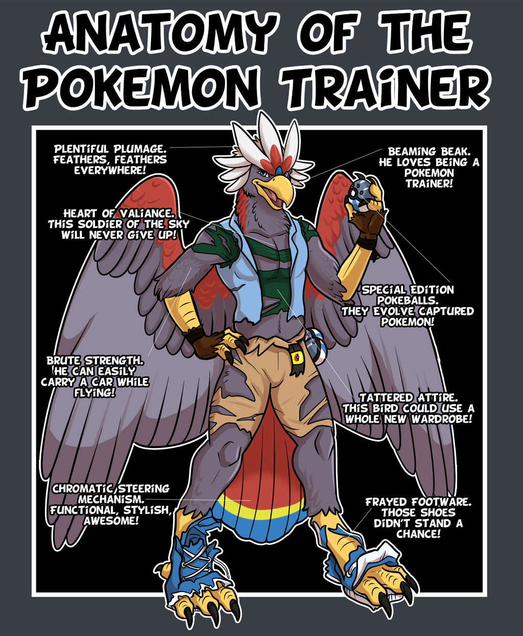 Anatomy Of The Pokemon Trainer By Pheagle Adler On Deviantart