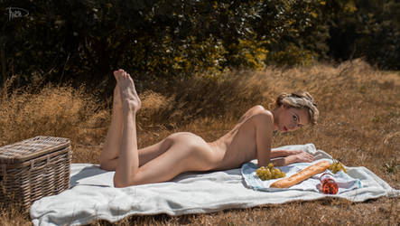 picnic by philippe-art
