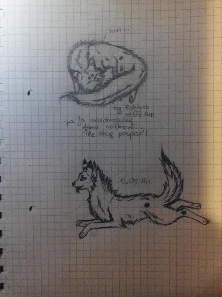 Wolves by Estchra