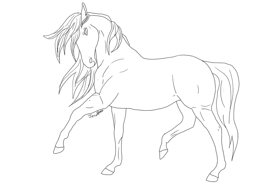 Horse line drawing - photo#9