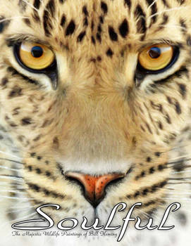 Soulful Book