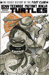 TMNT Leo and Don IDW sketch cover