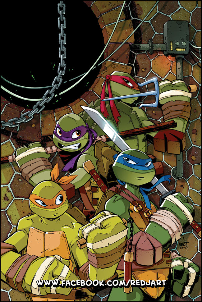 TMNT Animated 9 Cover Art