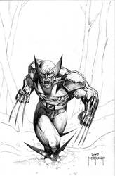 Wolverine - Charging by JMan-3H