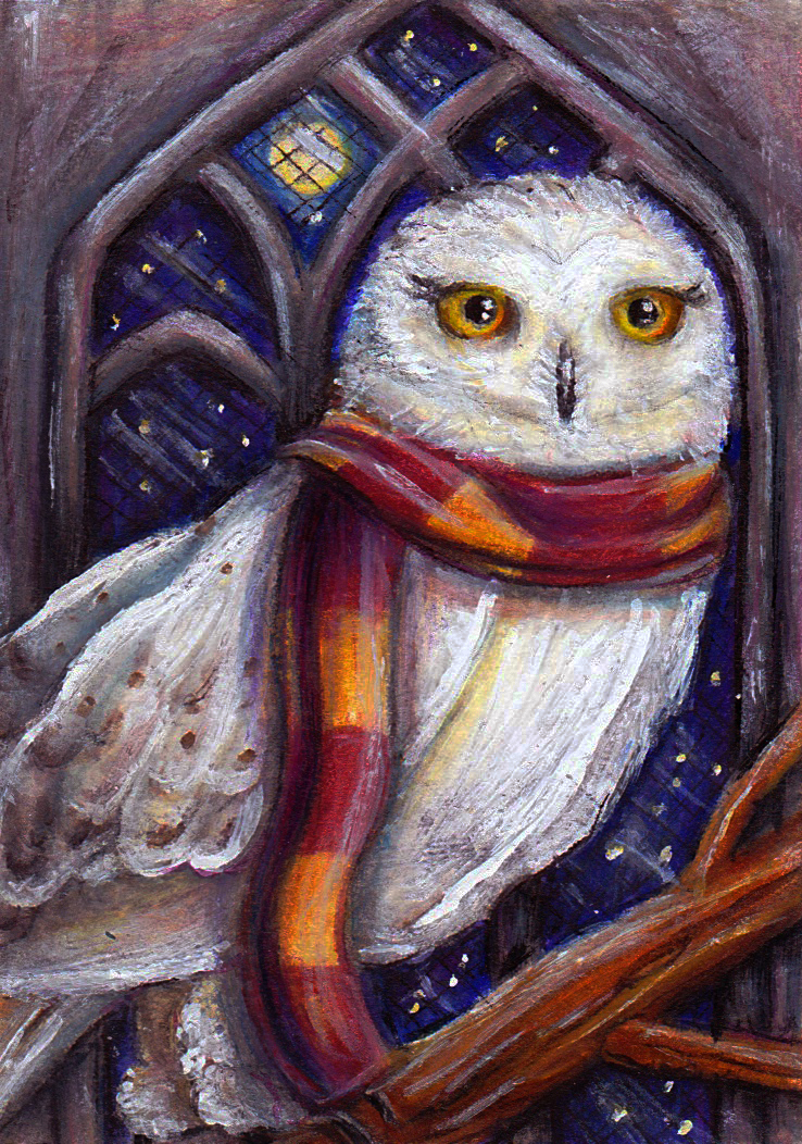 Hedwig in the Owlery by MissCosettePontmercy on DeviantArt