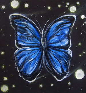 Starlit Butterfly