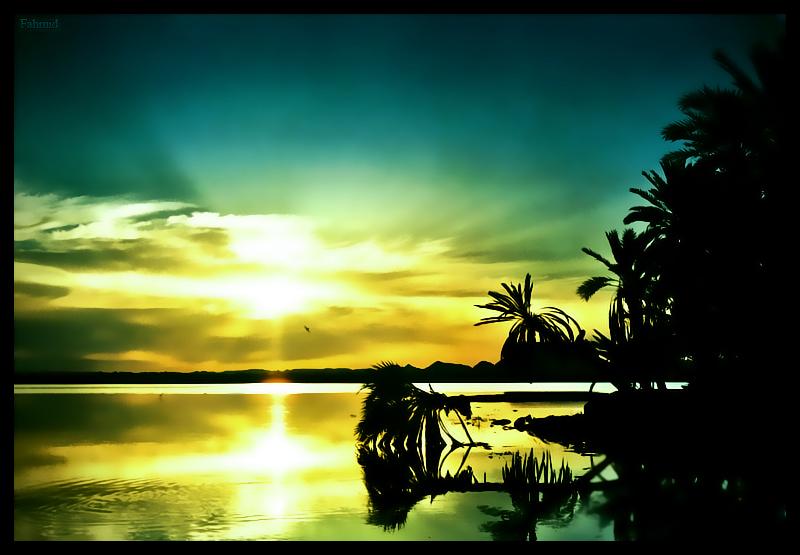 Oasis by blazestalker