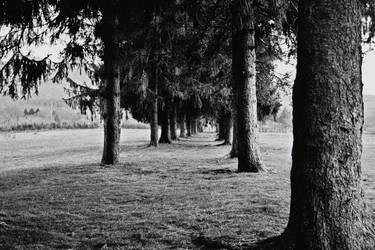 Eternal road. by AleksandraHope