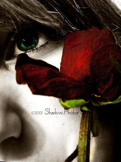A rose to remember me by XxshadowxphobiaxX - Kar���k ~ Avatar ar�ivi