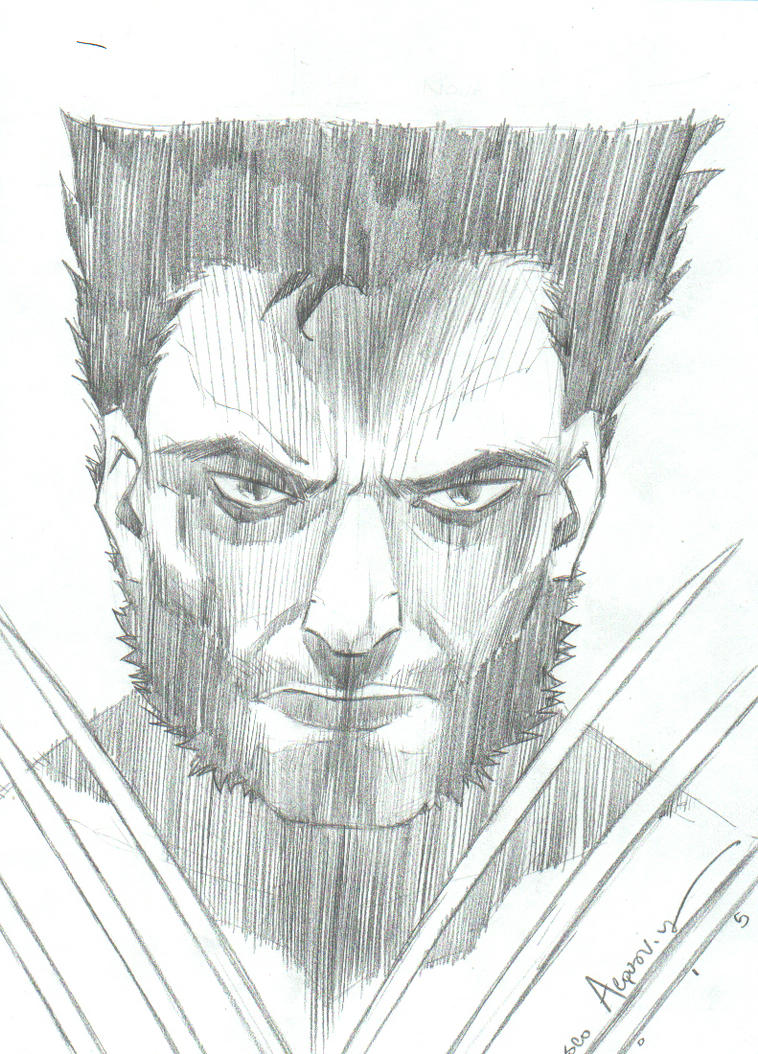 Wolverine by H2O77