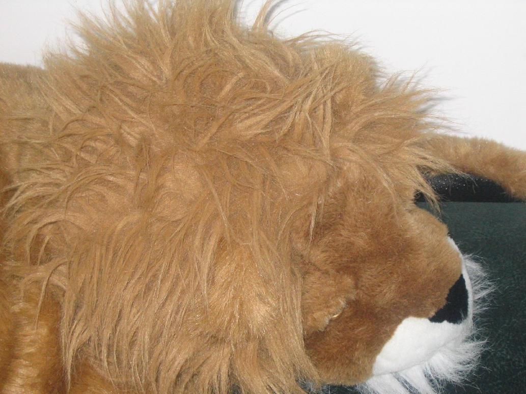 Furry Lion by sweetoea26