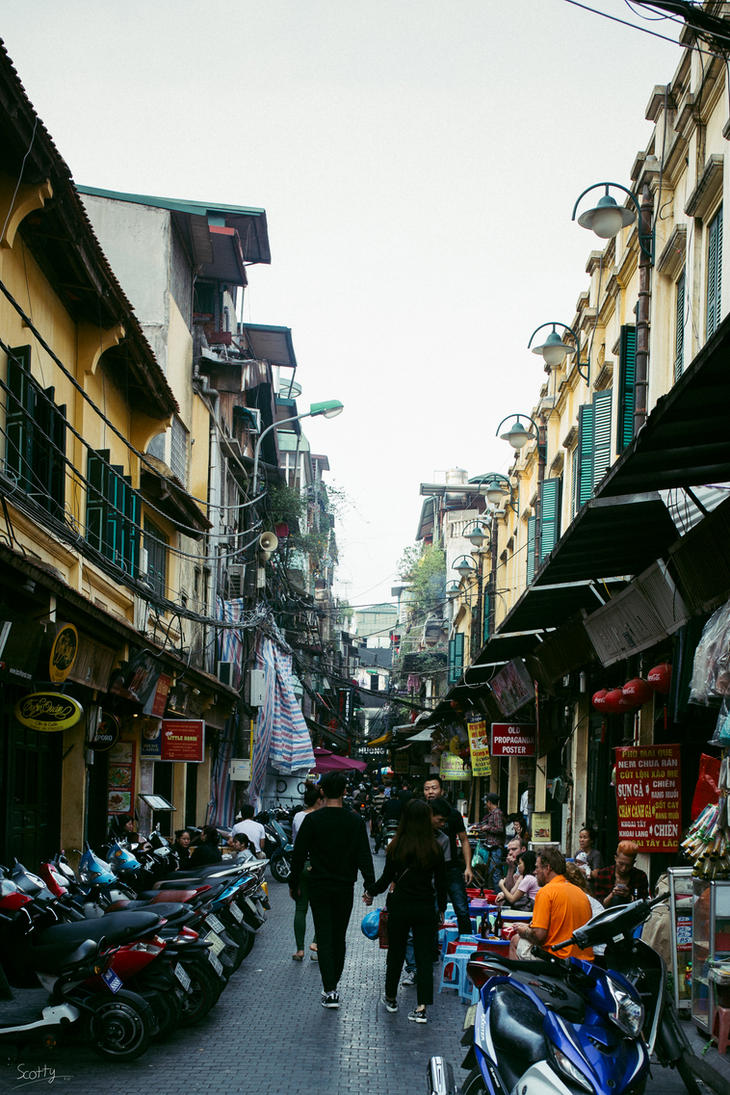 January of Hanoi by IWSFOD-D