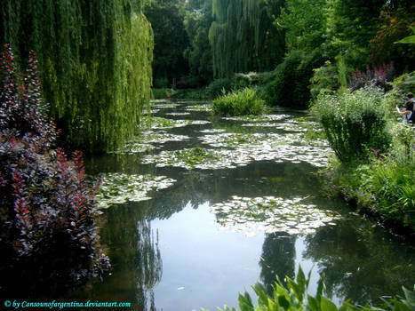 Giverny - Water-Lily pond