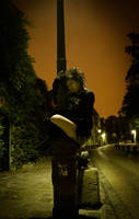Night bird by fb101