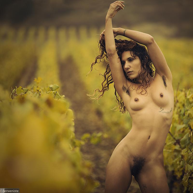 Through the vine by fb101