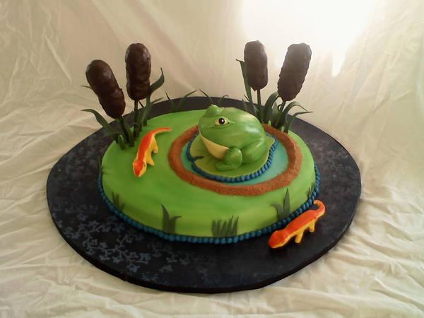 Frog Birthday Cake. by helen1988