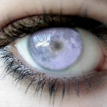 the midnight eye