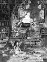The library of Theodosius by Ermelin