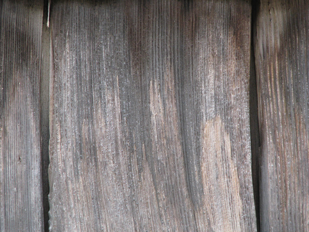 00019 - Weathered Wood by emstock