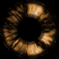 Textura olho castanho escuro /  brown eye text by AxelMuller
