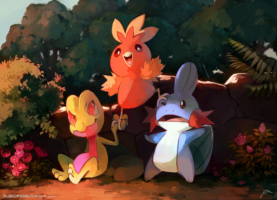 Pokemon Wallpaper Starters Hoenn | www.imgkid.com - The ...