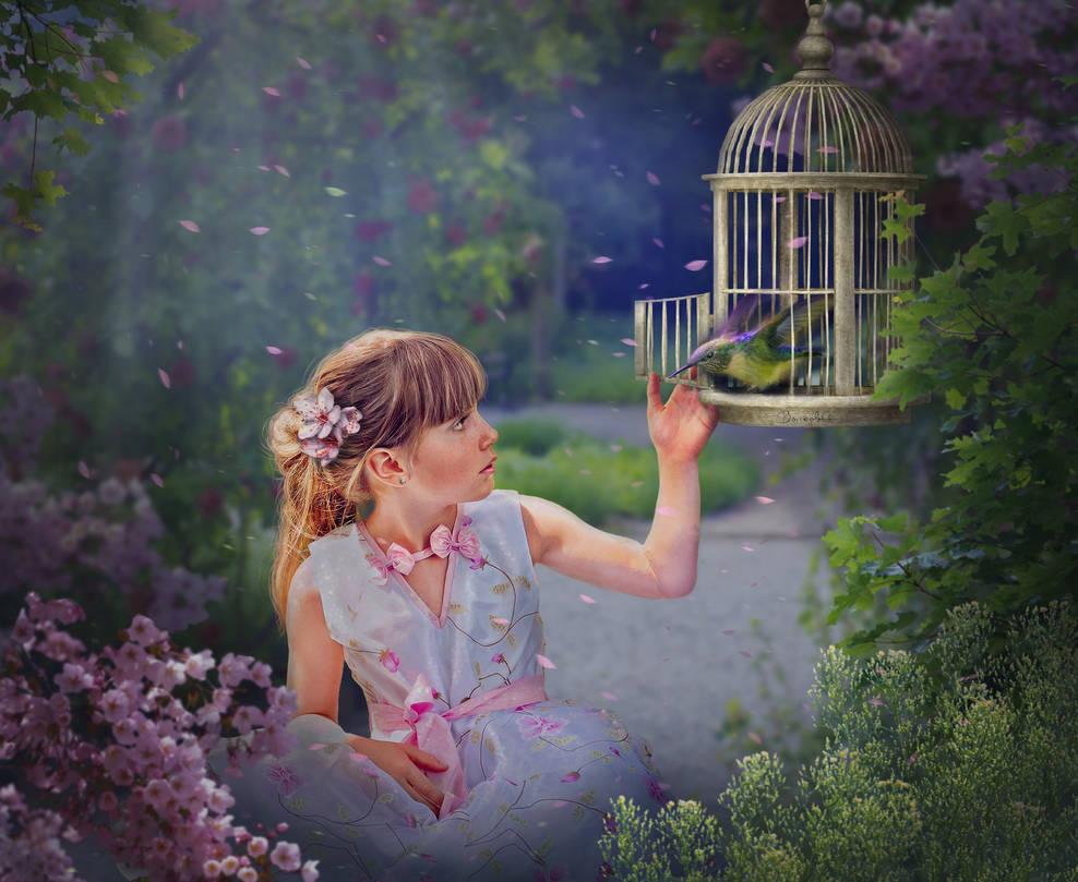 I release the bird