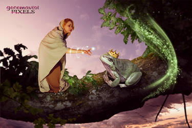 Witch And Frog by gecemavisipixels